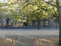 ウンターデンリンデン通り。  菩提樹の並木道です。   工事が多いので、景観はいまいちでした。