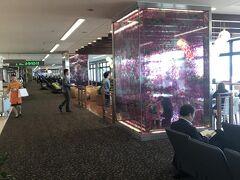 宮崎ブーゲンビリア空港に到着です。