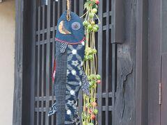 北鎌倉 アンティークショップ 蔵屋  店先に吊るされた鮭 お腹には筋子も入っていました。