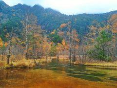 河童橋から歩いて40分ほどで田代池に到着。  田代池はその昔は池だったらしいが、今は山から流れてきた土砂で池底が埋まり、湿地へと変わっていた。  殆ど高低差のない湿地を流れる川。 特に特徴のない景色なのだが、自然が織りなす美しさが満ちていた。  まだ観光客も少ない朝の静けさの中で、この風景と出会えたことを感謝。