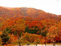 360度の紅葉に彩られた沢渡バスターミナルの木々は、山を歩いた旅人達に秋色木葉のKissを投げ掛けてくれた。  2018秋 上高地さんぽ 旅行記 の前篇は… ・刹那の氷花 https://4travel.jp/travelogue/11418027