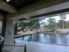奈良国立博物館の正倉院展に入場します。