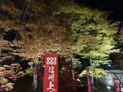 ちょうど「上田城紅葉まつり」の開催中で、ライトアップもされているとのことで行ってみましたが、ライトアップは一部のみで、夜間は賑わっていませんでした。