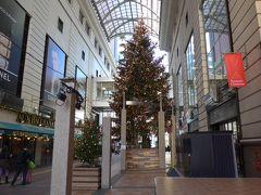 博多大丸のクリスマスツリー