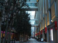 日本橋を背に中央通りを進み 日本橋高島屋に着きました。  9月末の新館ショッピングセンターオープン時に 本館との間にできた歩行者天国「ガレリア」  「パリのパッサージュを思わせるような」との 謳い文句につられて(^^;)  パリかどうかはさておき(笑) 明るいうちはどうにも撮りようがなさそうで。