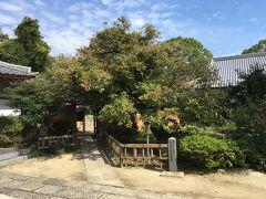 戒壇とは僧尼が守るべき戒律を授ける所だそうで、奈良の東大寺、栃木の下野薬師寺とともに「天下の三戒壇」と呼ばれていたとのこと。元々は観世音寺に一部だったものが江戸時代に独立した。由緒ある寺で趣はあるものの、こんなものかなという感じ