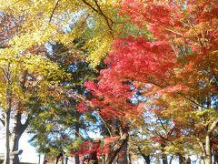 閉園?時間まで景色や紅葉を楽しんだので真っ暗にならないうちに那須へと戻ります。
