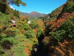 紅葉は、ほぼ見頃。 渓谷が深く、水はかろうじて見える程度でした。