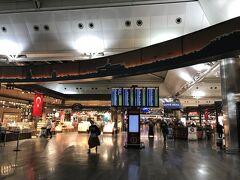 アタチュルク空港に到着。 免税店やフードコートがあり大きな空港です。