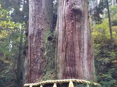行く途中で見つけた御岩神社へ、近くまで来たので寄ってみました。  御岩神社の手前には、樹齢500年といわれる三本杉がありました。