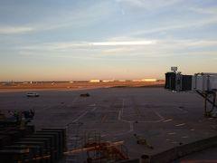 ダラス フォートワース国際空港 (DFW)