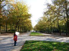 お向いの、ブリュッセル公園。  さ!息子よ~走れ~~。