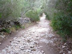 海岸の奥に道が続いており、plage de Fazzioへ行けます。ちょっとした散歩コースです。
