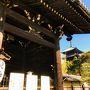 まずは 大阪からの来ると 迎えてくれる東寺。