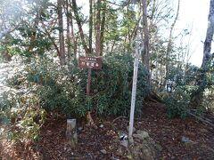 行者還岳(標高1546m)に登頂。樹木に囲まれて景色はあまり見えない。