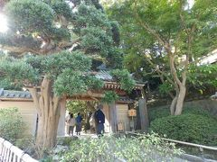 暫く歩くと見えてきたのは、報国寺です。 観光地ですが、こちらには寄らず、進みます。