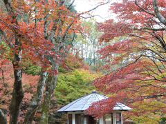 鶏足寺の境内が見えて来ました。バス乗降場所から2㎞、30分要します。