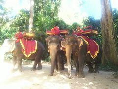 象に乗りました。 バイヨンの周りを一周しました。  これ、一回20ドルかと思いきや ひとり20ドルなんですよね(高い)