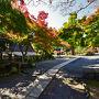 黒門から入ることにしました。 永保寺の紅葉 名勝庭園にある臥竜池に架かる橋「無際橋」へ 夢窓疎石の設計による庭園は素晴らしい池泉回遊式庭園です。