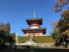 本堂の裏手に広がる成田山公園へ。公園から見上げた平和大塔。