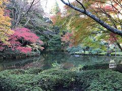 成田山公園に入り、坂を下っていき、きれいに紅葉した池へ。