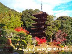 紅葉の見頃にはちょっと遅かったかな?と思いましたけど、まだまだキレイでした。 というか、青空をバックにすると、全ての景色がキレイに見える不思議!  この五重塔、1442年建立で、日本で10番目に古いそうです! これは色々な景色に再訪してみたいな!