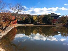 【大仏池からのぞむ大仏殿】 いい写真スポットがあるということで向かったのが、大仏池。池に鏡のように映り込んだ大仏殿に車内からしばし見とれていました。