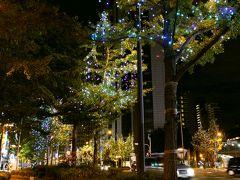 大阪のシンボルストリート御堂筋。 その通りの街路樹を、美しくライトアップで彩る御堂筋イルミネーションは、全長4キロにも及ぶギネス認定のイルミネーションなんだとか… イエローとブルーの光に包まれて。