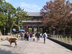 近鉄奈良駅前からバスに乗って、東大寺に来ました。 この辺は外国人観光客がけっこういました。