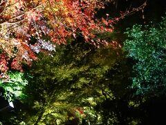 長楽館の前を通過して円山公園内を抜けて突き当たりまで行き  右にくだってから左折すると「ねねの道」  この写真の「台所坂」を上ると高台寺に着きます  知恩院から歩いて約10分程度  それほど人が多くない感じでした