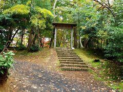 11月11日、今日は柏崎市の「松雲山荘」(  https://koyo.walkerplus.com/detail/ar0415e154546/  )に向かい、紅葉を楽しみます。   今年も柏崎の公園の駐車場に停め、南門から入ります。