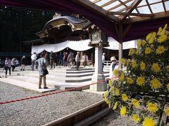 20分ほど歩くと弥彦神社(    http://www.yahiko-jinjya.or.jp/  )で、別の道から境内に入りました。