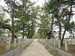法隆寺へ続く参道