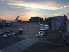 まだ暗いうちに家を出ましたが、ようやく日が昇ってきました。6:50発のJL623便に搭乗です。