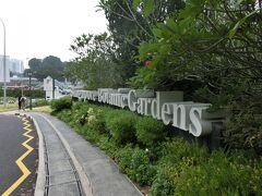 今日の目的地はボタニックガーデン。 なんと150年もの歴史のある植物園です。  オーチャードからバスですぐでした。