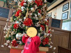 写真を撮りながらゆっくり移動すると、ちょうどPSの時間になったので、レストラン櫻へ。 クリスマスツリーが、少し和テイストで素敵でした♪ (料理の写真は、撮り忘れました・・・)