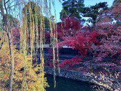木々が赤・緑・黄色と綺麗に色づいていて素敵ですね。