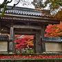 聖徳太子ゆかりの寺院・紅葉名所東光寺(2018)