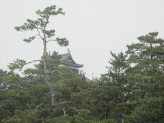 スタートして間もなく国宝松江城の前を通過する。 お城の手前の松の木がブラインドとなり、お城の天守部のみが見えます。