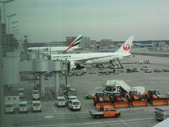 フランクフルト国際空港に到着。