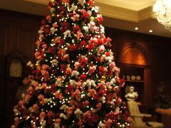 ホテルに戻ってきました。 最初に入ったとき、場違いすぎて緊張しました。 ロビーにはクリスマスツリー★