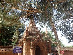 ティーローミンロー寺院到着 1215年建設