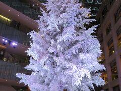 丸の内 JPタワー「KITTE」のクリスマスツリー  開催期間:11月21日~12月25日 開催時間:月~土/17:10~22:40、日・祝 /17:10~21:40  高さ約14.5mの本物のモミの木を使ったクリスマスツリー。 雪が降り積もったかのように真っ白な装飾が施されたクリスマスツリーは、各時30分おきに音楽にあわせてライトアップされます。  今年は、雪が舞い散るように降り注ぐライトアッププログラム「Precious Ver.」に加えて、女性ソロアーティストの西野カナさんとKITTEがコラボレーションしたライトアッププログラム「Bedtime Story Ver.」も実施。