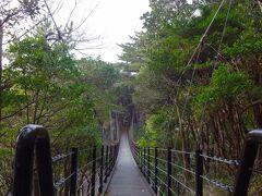 200mほど歩けば橋立吊橋へ到着します!  この橋は長さ60m、高さ18m、定員20人の吊橋だと掲示板に書かれています。  オフシーズンのため乗員?は我々夫婦だけですから二人合わせても110kgにも満たず余裕ですが、それでも渡るとーー。