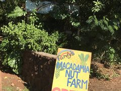 Purdy's Natural Macadamia Nut Farmに到着。