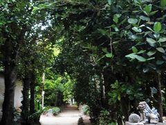 前日フグキ並木へ行ったら人が多かったので、朝リベンジするつもりで来た。とはいっても、まだ薄暗いこともあり(何より技術が・・・)ピンボケの写真しか取れなかったのでわざわざこのために早朝に行く必要はなかったと思う。