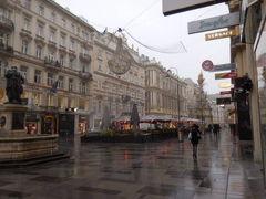 シュテファン広場からグラーベン通りをまずは散歩。 雪と雨が混じってますよ、ちょ~寒い。 早ければ開いているカフェがあるのでは?と歩きながら探しますが、気づかなかっただけか、見つけられず、気が付いたらミヒャエラー広場に出ました。