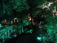 マリネラソフィアホテル 夜の日本庭園