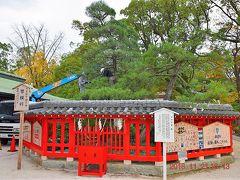 パワースポットとして信仰厚いの御神木『筥松』  朱の玉垣に護られた松です。