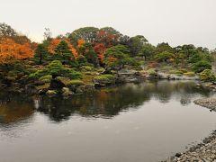 庭園内を散策します。 池泉回遊式日本庭園が素晴らしい、紅葉に彩られとても綺麗。